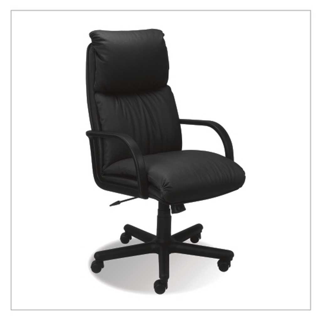 NADIR TS13 SP-A (SH)  Bőr fotel